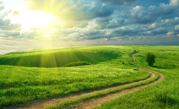 landweg met zon