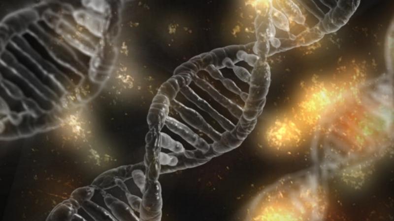 Bewijs dat God bestaat - ontwerp van de cel - dna