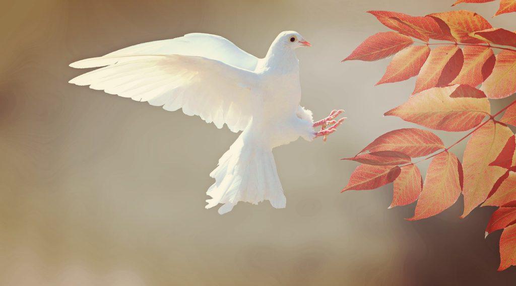 Wie is de Heilige Geest